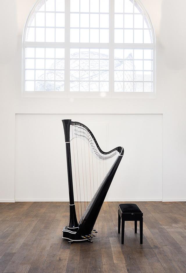 Camac Harps France - Big Blue 47 Custom